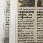 Primo gruppo per i bambini in italiano,Jutarnji list 8.7.2015.